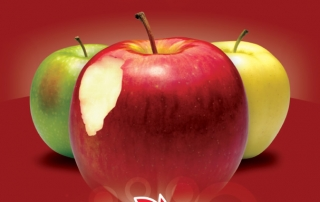 Washington Apples' Love Campaign Poster - Love the CRUNCH