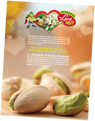2013 Gold ADDY Love Nut Brochure
